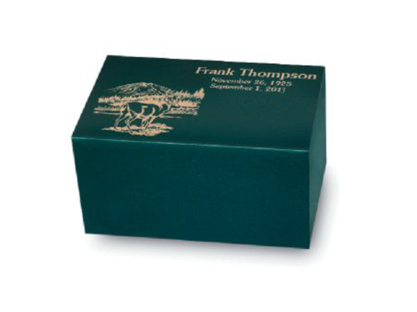 Regal Painted Bronze Chest (Polo Green)